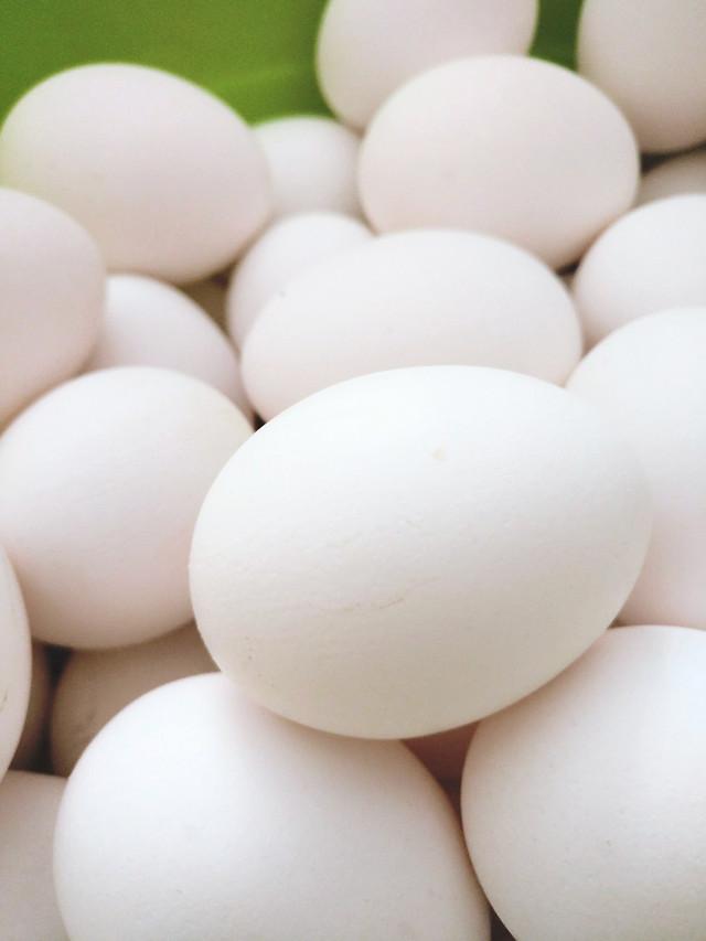 egg-easter-chicken-shell-eggshell 图片素材