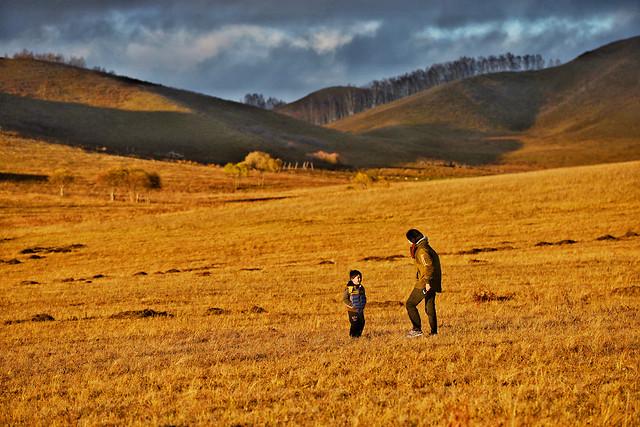 landscape-nature-grassland-field-sky picture material