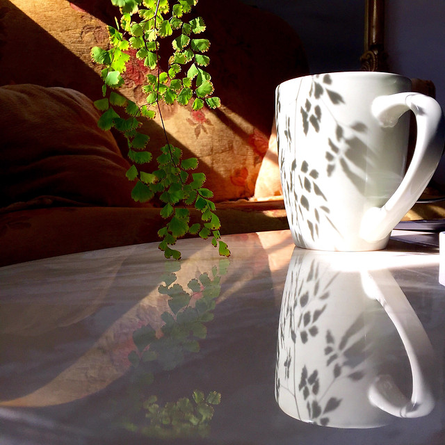 coffee-cup-dawn-drink-tea picture material