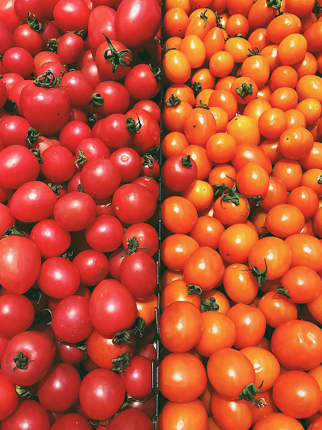 tomato-food-vegetable-healthy-natural-foods picture material