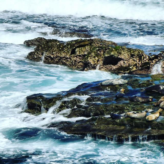 water-sea-ocean-seashore-travel picture material