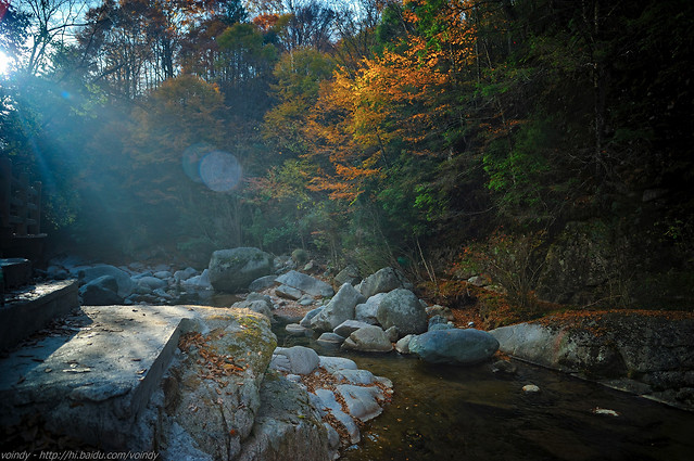 water-no-person-river-landscape-tree picture material