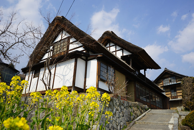 house-building-family-architecture-home 图片素材
