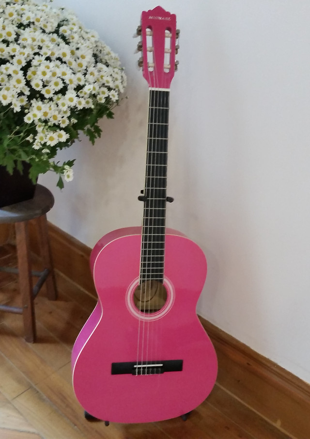 instrument-guitar-wood-music-acoustic picture material