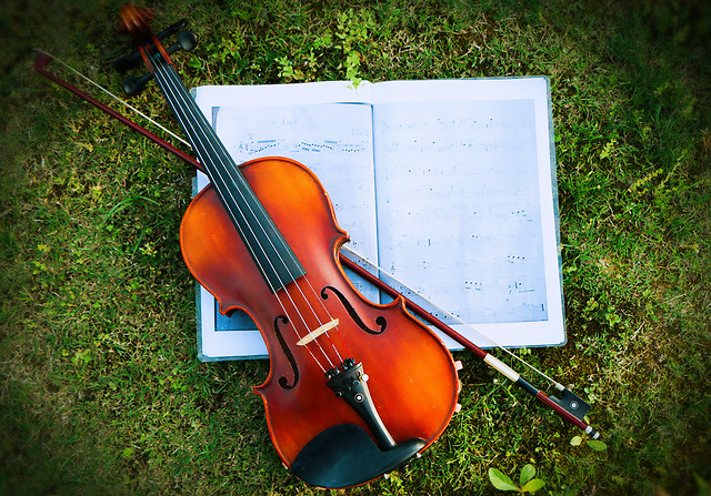 violin-music-instrument-wood-classic picture material