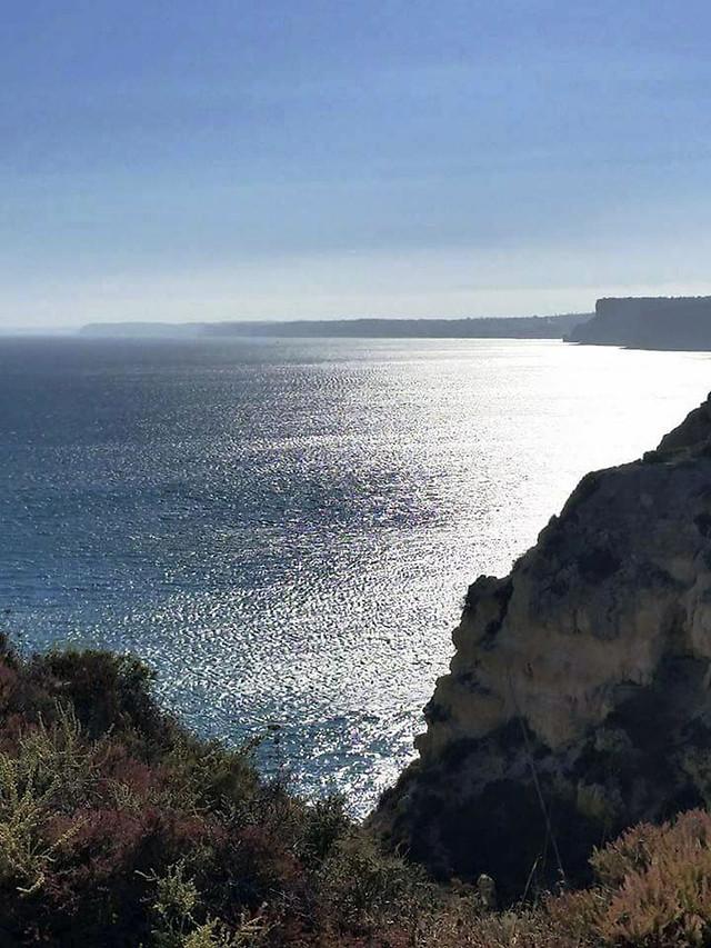 seashore-sea-water-landscape-no-person picture material