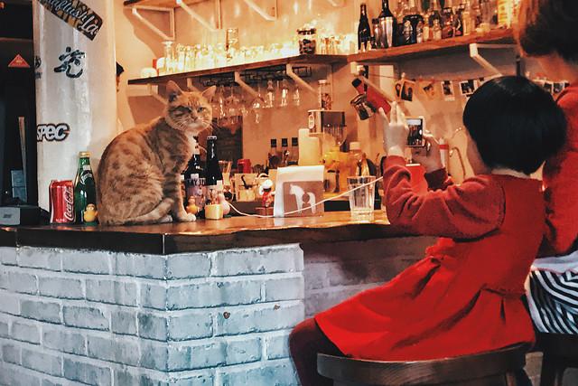 people-bar-restaurant-stock-drink 图片素材