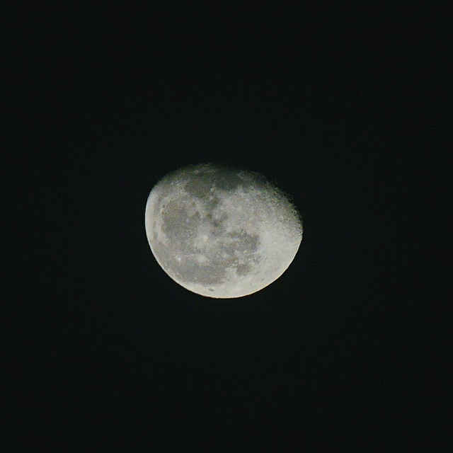moon-astronomy-luna-lunar-full-moon picture material