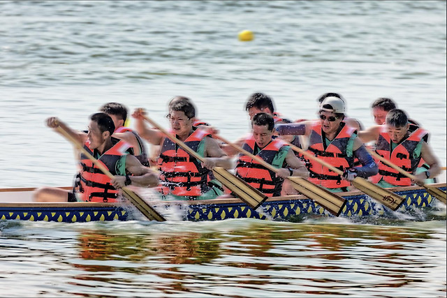 rowing-water-fun-teamwork-competition picture material