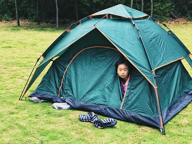 tent-camp-campsite-camper-leisure picture material