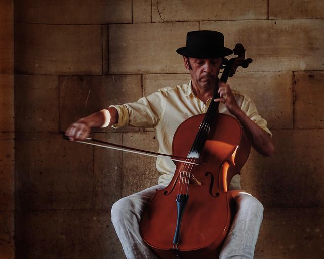 violin-music-musician-classic-violinist picture material
