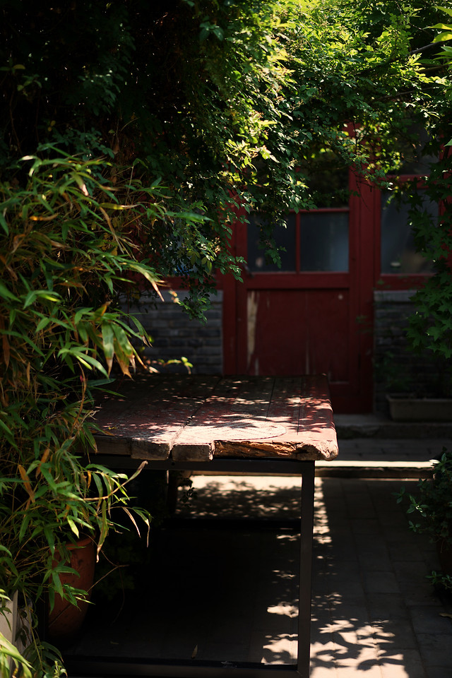 no-person-garden-wood-bench-tree picture material