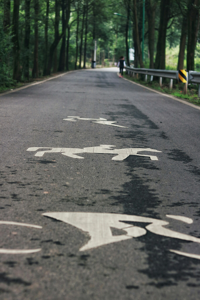 road-asphalt-no-person-guidance-transportation-system picture material