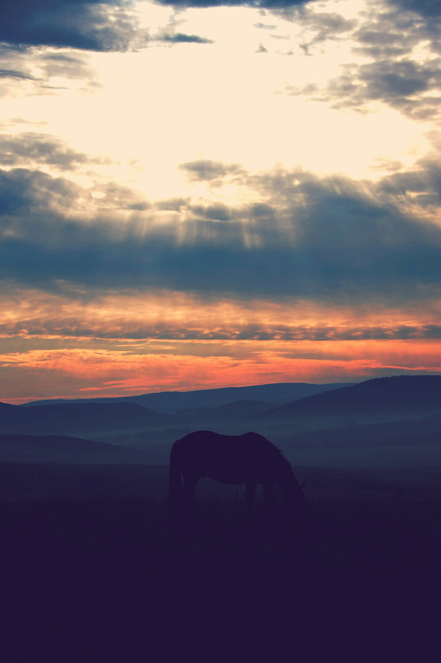 sunset-dawn-evening-no-person-sky 图片素材