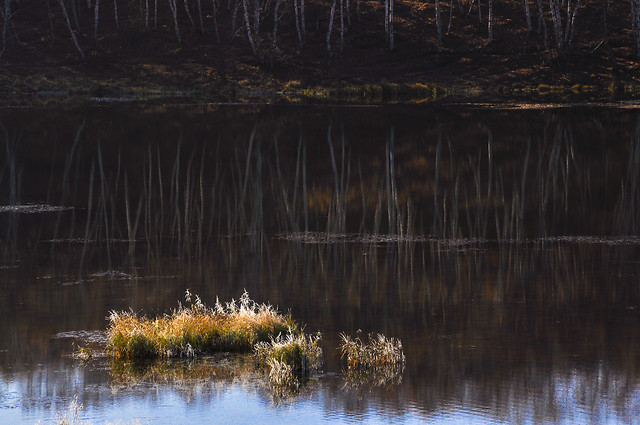 water-no-person-reflection-river-nature 图片素材