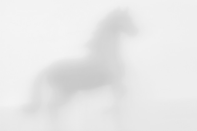abstract-blur-art-no-person-white picture material