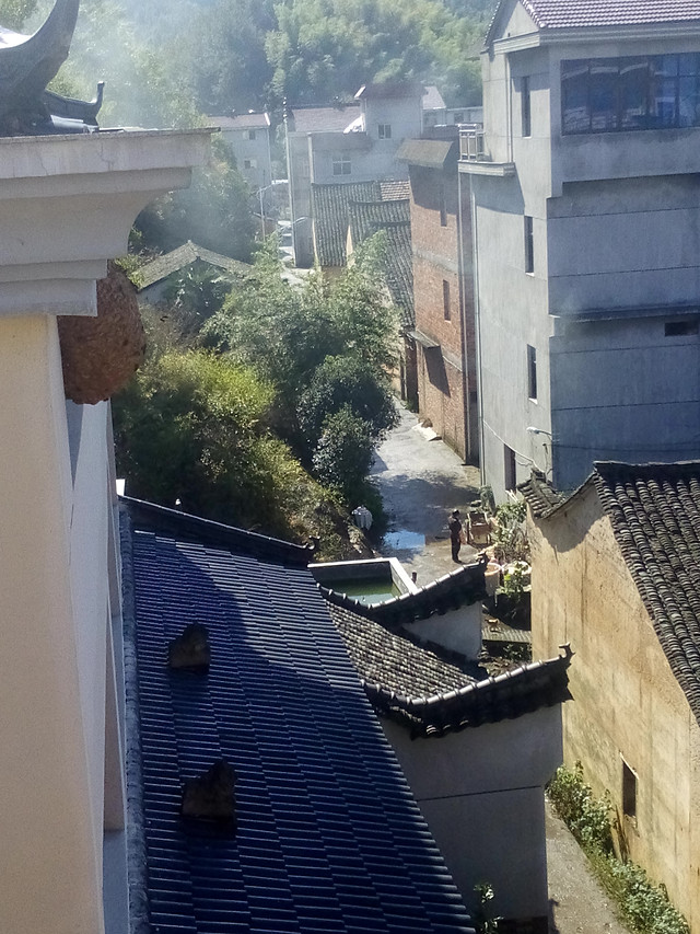 architecture-town-tranquil-scene-roof-house picture material