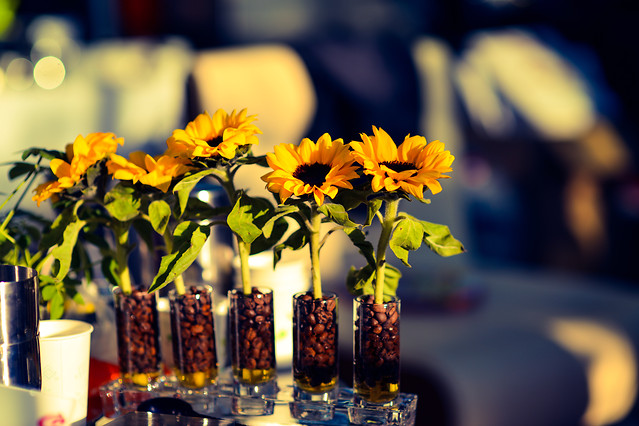 no-person-flower-celebration-yellow-vase picture material