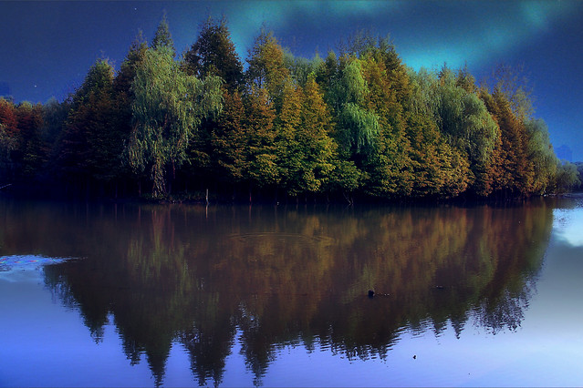 lake-water-no-person-reflection-landscape picture material