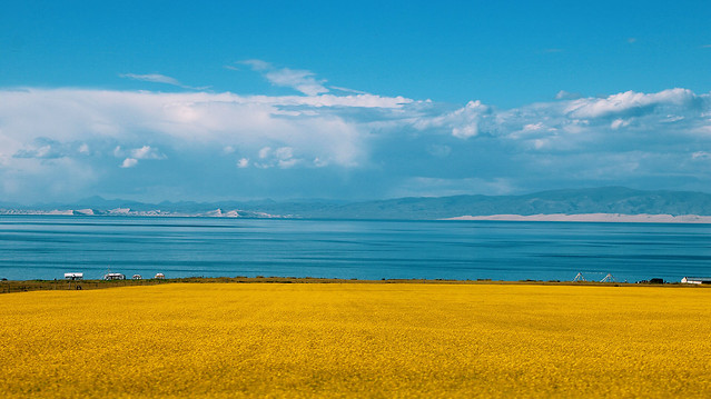 sky-field-landscape-horizon-sea picture material