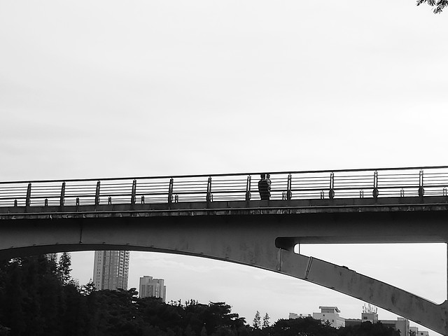 bridge-no-person-architecture-sky-transportation-system picture material