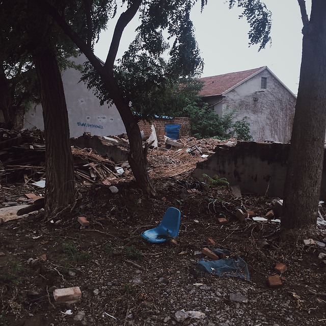 calamity-waste-environment-hurricane-tree picture material