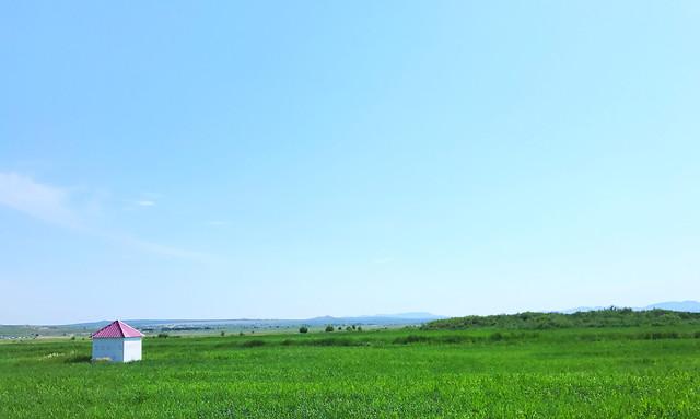 grass-field-nature-landscape-no-person picture material