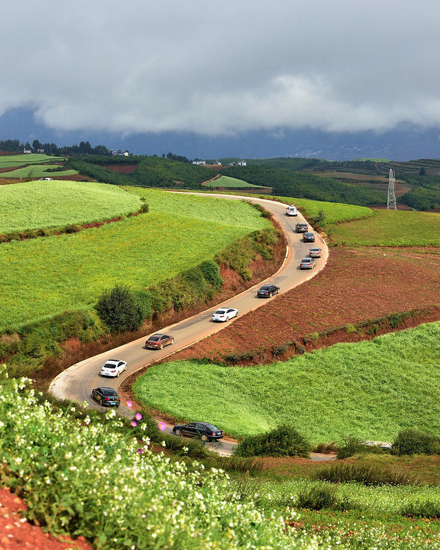 agriculture-field-landscape-farm-countryside picture material