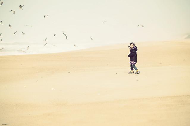 beach-sand-sea-ocean-seashore picture material