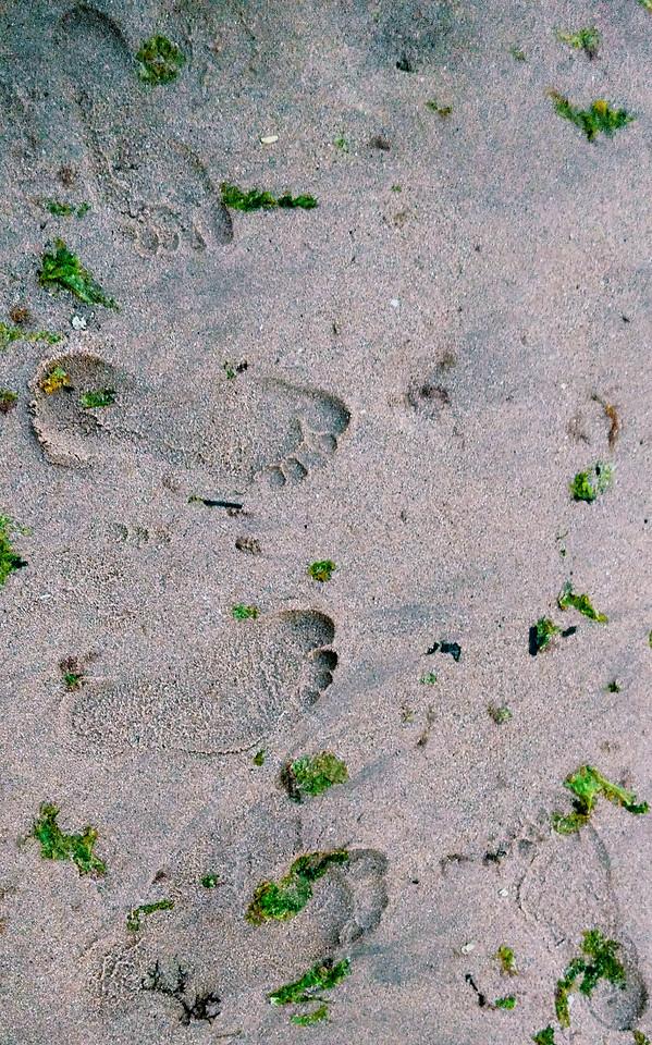 sand-desktop-texture-beach-seashore picture material