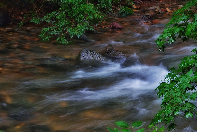 water-no-person-waterfall-river-stream picture material