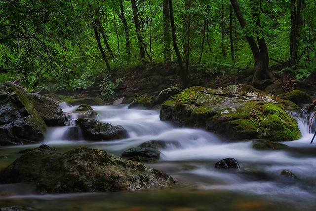 water-river-waterfall-stream-wood picture material