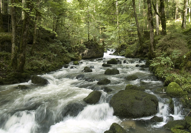 water-waterfall-wood-no-person-stream picture material