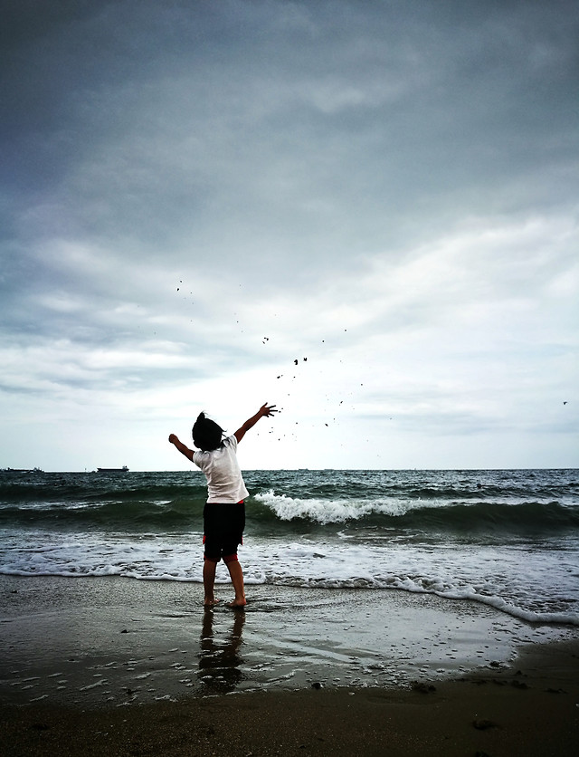 beach-water-sea-freedom-sand picture material