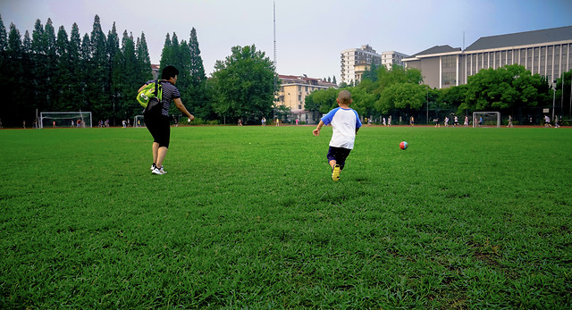 ball-soccer-competition-recreation-green picture material