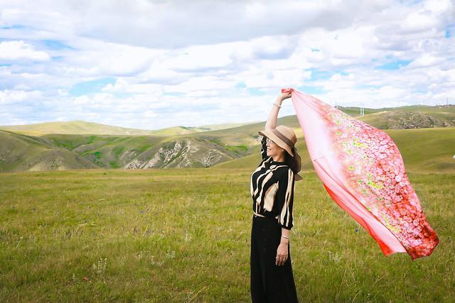 grassland-mountainous-landforms-ecosystem-sky-grass picture material