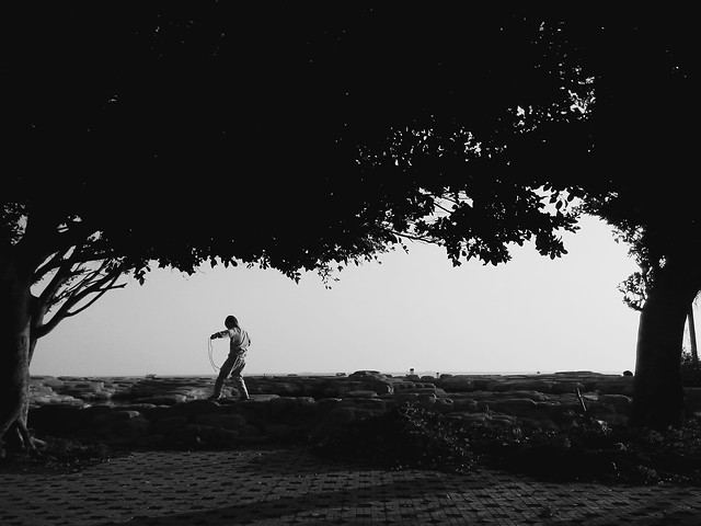 people-tree-one-silhouette-landscape picture material