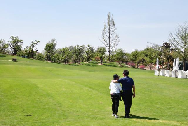 golf-golfer-golf-club-putt-landscape picture material