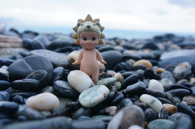 rock-beach-sea-nature-stone picture material