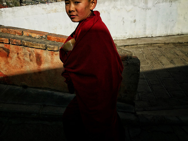 people-one-monk-portrait-adult picture material