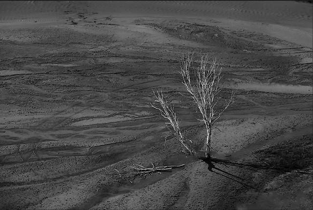 no-person-monochrome-landscape-desert-wasteland picture material