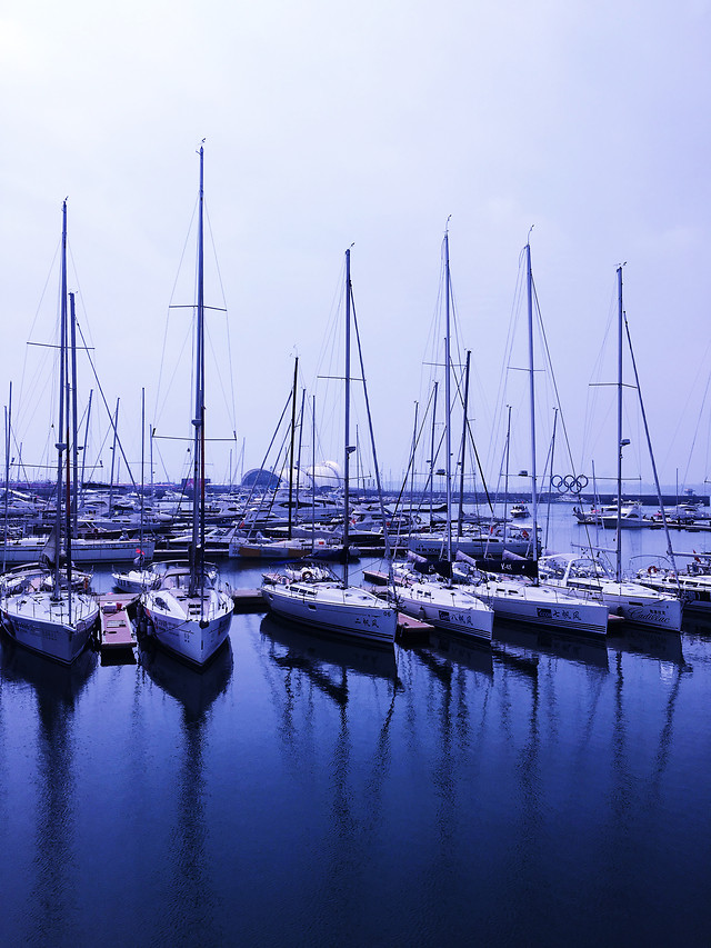 no-person-water-marina-harbor-yacht picture material
