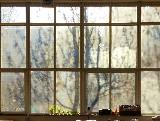 window-glass-items-indoors-no-person-house picture material