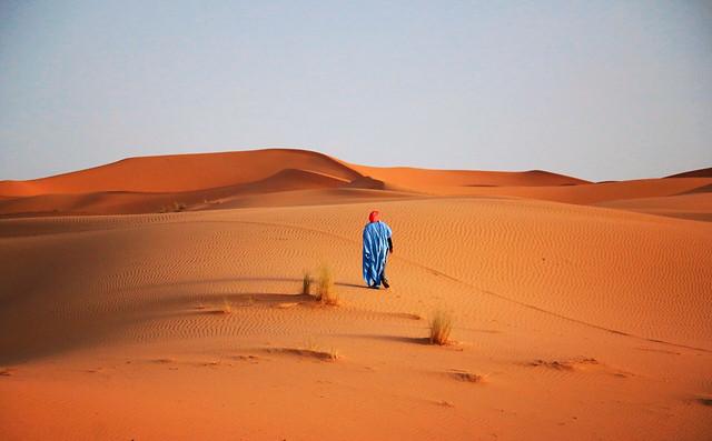 desert-sand-dune-wasteland-arid picture material