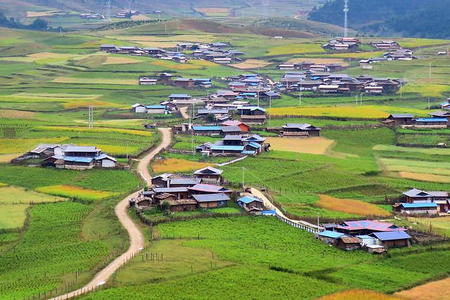 landscape-agriculture-cropland-farm-no-person picture material