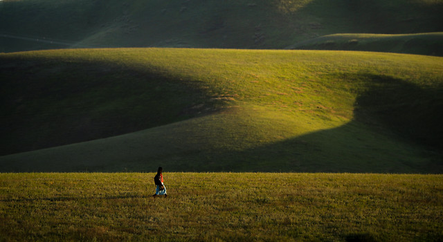 landscape-cropland-no-person-agriculture-grassland picture material