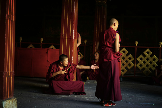 people-adult-woman-monk-religion picture material