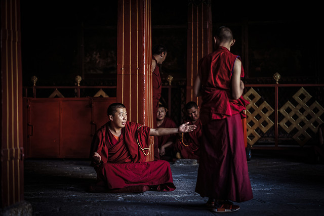 people-monk-religion-adult-woman picture material