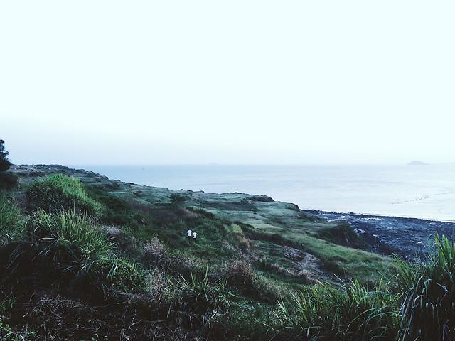 landscape-sea-seashore-beach-water picture material