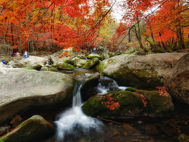 fall-water-river-no-person-stream picture material